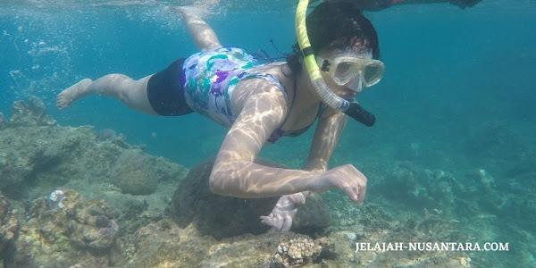 rencana perjalanan wisata open trip pulau peucang ujung kulon