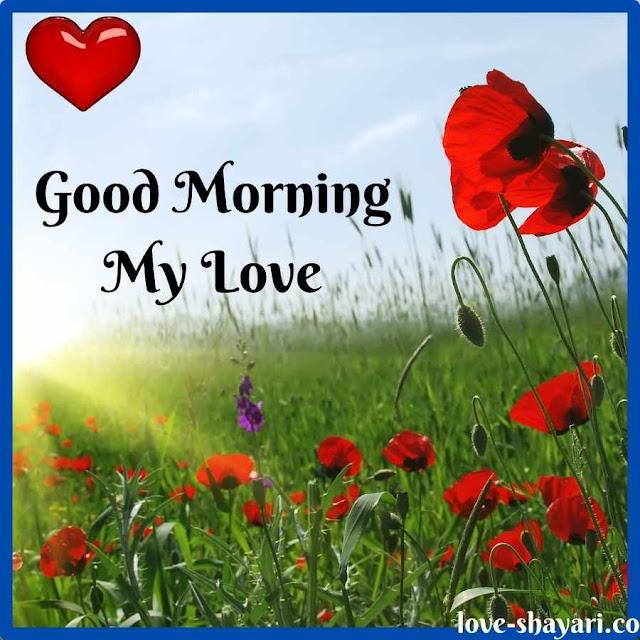 good morning lovely images