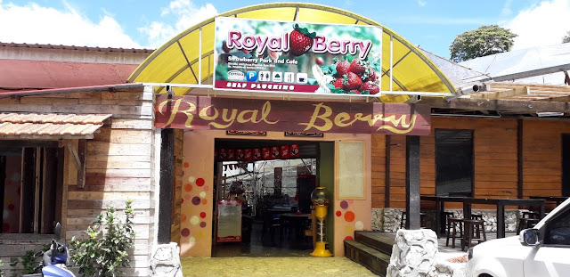 Royal Berry Strawberry Farm & Cafe