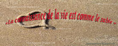 Phrases de la vie