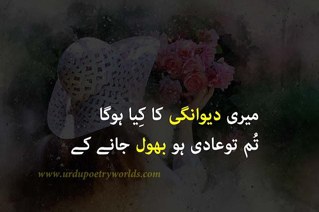 urdu sad poetry status