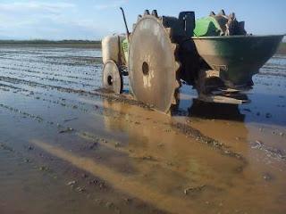 Περικοπές σε αγροτικές επιδοτήσεις με τη νέα ΚΑΠ