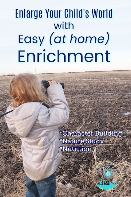 Enlarging Your Child's World with Easy Enrichment