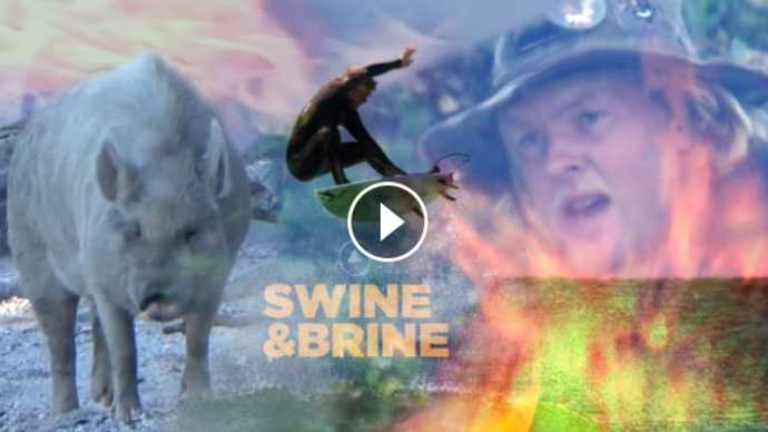 SWINE BRINE