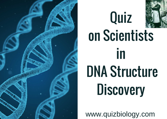 Quiz on Scientists in DNA Structure Discovery