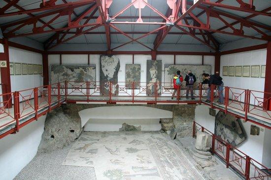 متحف فسيفساء القصر الكبير