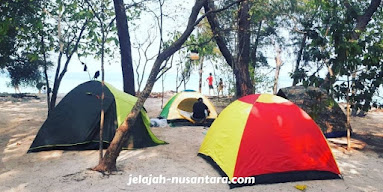 aktivitas camping pulau dolphin