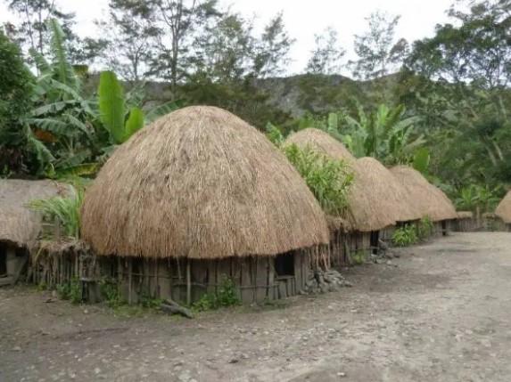 Gambar Rumah Honai Provinsi Papua