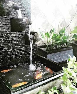 Kolam koi dengan batu alam