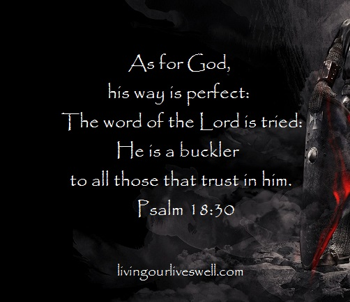 Psalm 18:30 As for God, his way is perfect: the word of the Lord is tried: he is a buckler to all those that trust in him.