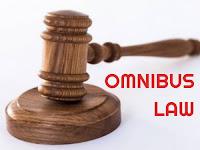 Omnibus Law Menurut Perspektif Pemerintah