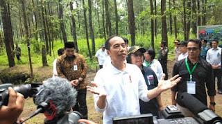 Bukan Mengada-Ada, Investor Bisa Sewa Tanah dengan Harga Rp0 Berkat UU Cipta Kerja