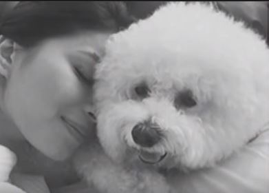 Angel Locsin's Sweet Moment With Her Baby Pwet-pwet