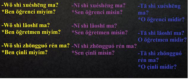 cince-soru-cümleleri