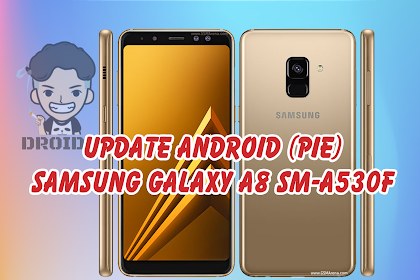 Update Samsung Galaxy A8 Firmware SM-A530F Android Pie