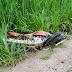 Motociclista morre em colisão com Fiat Toro na BR 324, em Jacobina