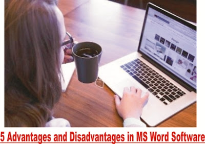 5 Advantages and Disadvantages in MS Word Software in hindi