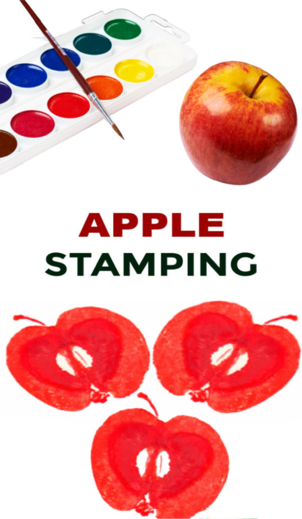 Apple stamping fall art activity for kids. ##applestamping #apples #appleartprojectsforkids #applecraftspreschool #growingajeweledrose #activitiesforkids