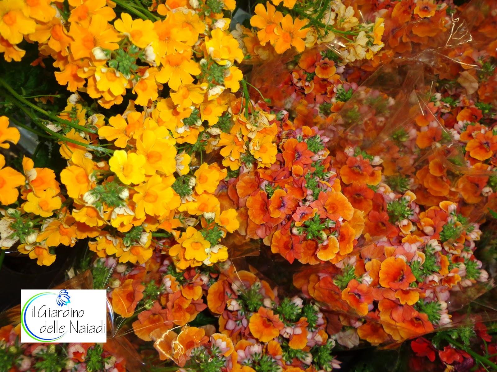 Il giardino delle naiadi colorare e profumare giardini e terrazzi