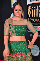 Nandita Swetha in a tight Green Choli Ghagra at IIFA Utsavam Awards March 2017 ~ 011.JPG