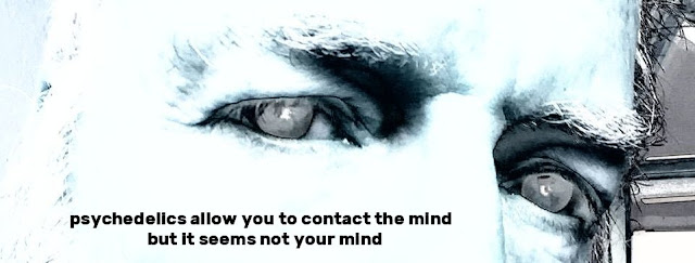 not your mind