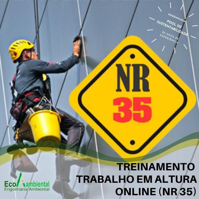TRABALHO EM ALTURA ONLINE (NR 35)