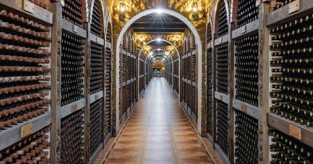 Invendute 220 milioni di bottiglie di vino, è scontro su come usare gli aiuti