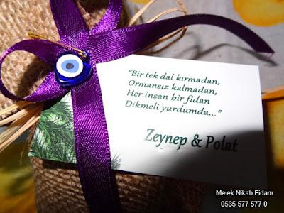 Bolu Mengen nikah fidanı Zeynep ve Polat  2