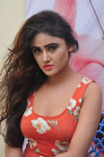 sony charista latest sizzling pics-thumbnail-15
