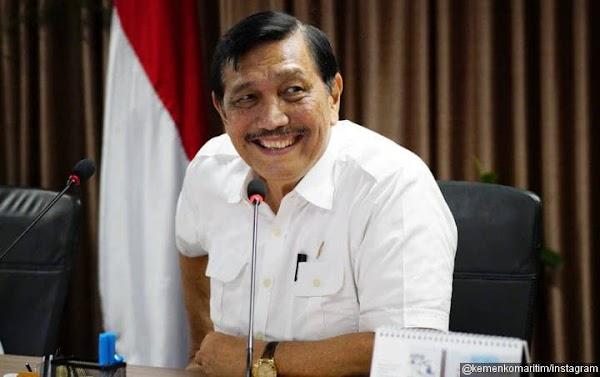 Luhut Diperintah Jokowi Tangani Covid di Sembilan Provinsi