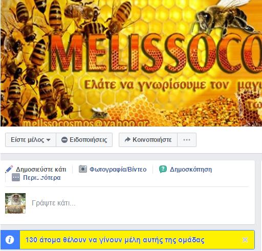 Πετάει ο MELISSOCOSMOS και η ομάδα μας στο Facebook