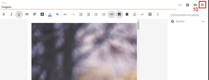 Imagem indicando o botão de publicar, na tela de criar nova página.