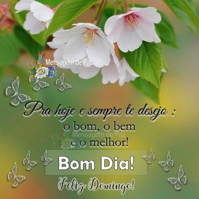 Pra hoje e sempre te desejo: O bom, o bem e o melhor! Bom Dia! Feliz Domingo!