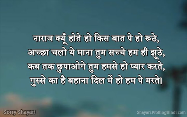 sorry shayari for best friend