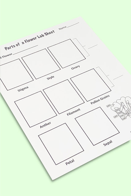Worksheets Fourth grade science
