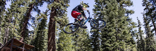 Mammoth Bike Park - fast downhills, dirt jumps, wooden ramps