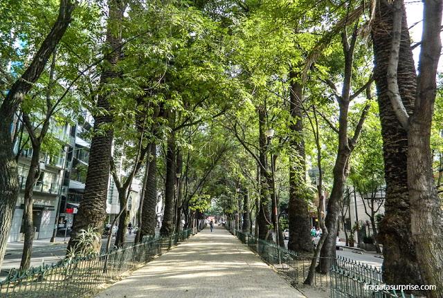 Bairro de La Condesa, Cidade do México