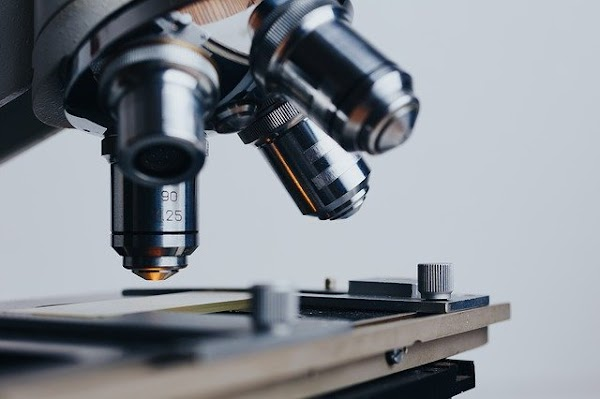 La Ciencia, el eterno dilema | por  David Valentin Torres