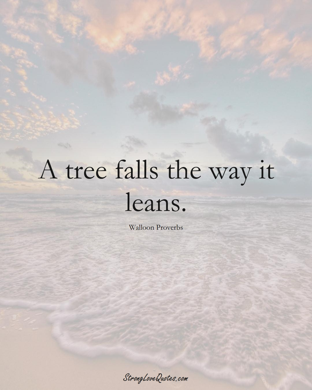 A tree falls the way it leans. (Walloon Sayings);  #aVarietyofCulturesSayings