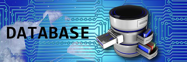 What is Database with Full Information - What is Database