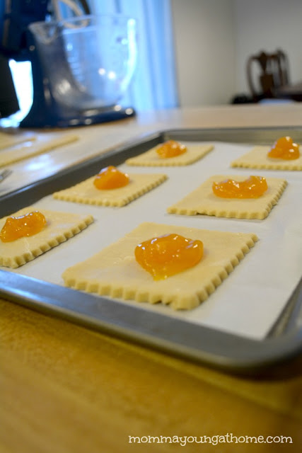 Mango Short Bread Cookies