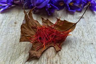 manfaat rempah saffron