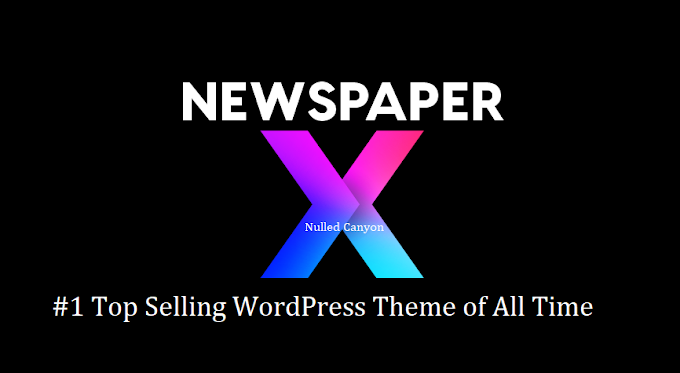 #1 Top Selling WordPress Theme of all time