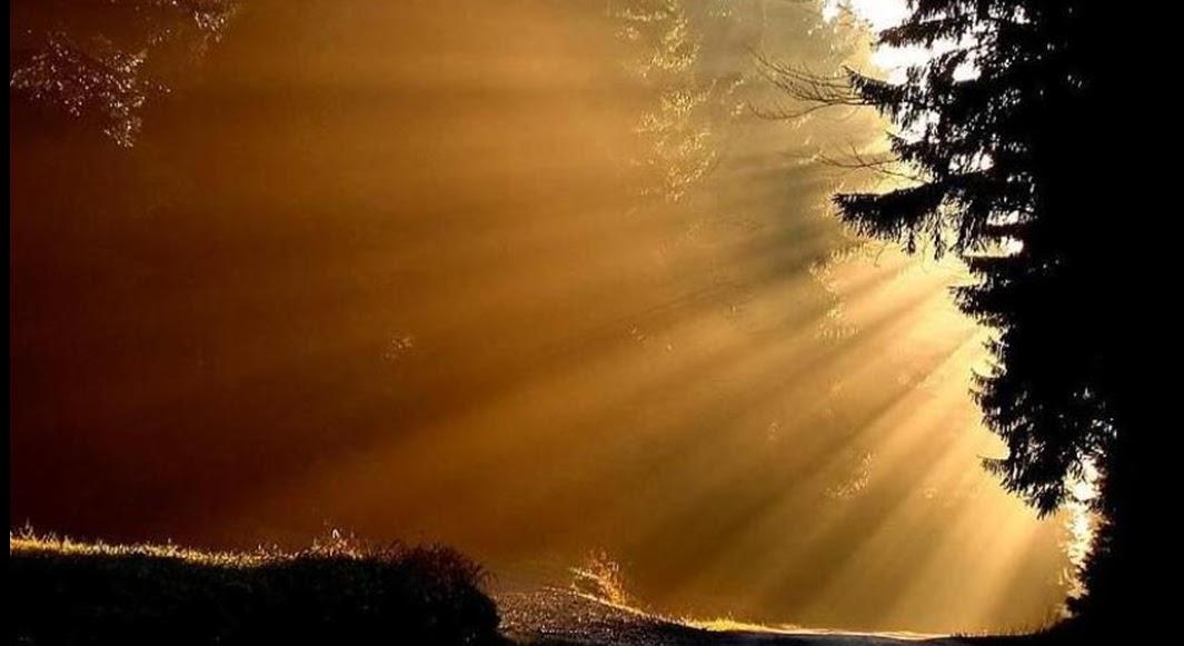 Será Que Deus Me Ama A Resposta Está Parmamykarma: Crescimento Espiritual : VOCÊ NÃO ESTÁ SÓ