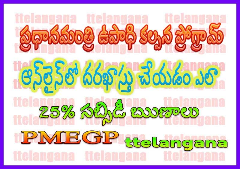 ప్రధానమంత్రి ఉపాధి కల్పన కార్యక్రమం (పిఎంఇజిపి) బ్యాంక్ రుణాలపై 25% సబ్సిడీ Prime Minister Employment Generation Programme (PMEGP) – 25% Subsidy on Bank Loans