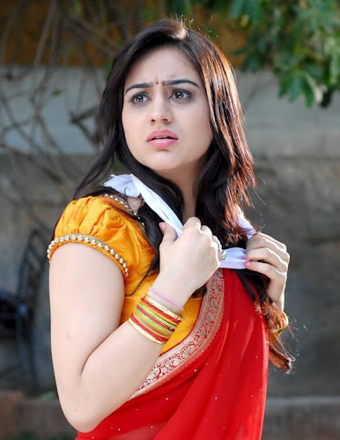 Aksha in Half Saree Latest Hot Pics