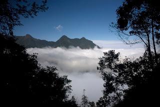 Audiovisual realizado en la Reserva de la Biosfera El Triunfo en la Sierra Madre de Chiapas, México. El Triunfo es una de las reservas naturales más importantes del mundo.  El Triunfo incluye selvas y bosques con muchos endemismos poblada por una gran variedad de plantas y animales.  En la reserva viven numerosas especies de aves incluyendo el Quetzal y el Pavón, ambos en peligro de extinción.   El Triunfo es también hogar para cientos de mariposas, anfibios y reptiles. De los grandes mamíferos aún conserva el tapir, monos araña y cinco especies de felinos incluyendo al jaguar. Conoce más sobre esta reserva en: www.ecobiosfera.org.mx y www.fondoeltriunfo.org