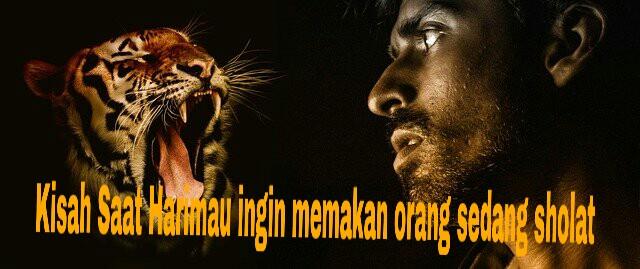 Kisah Harimau