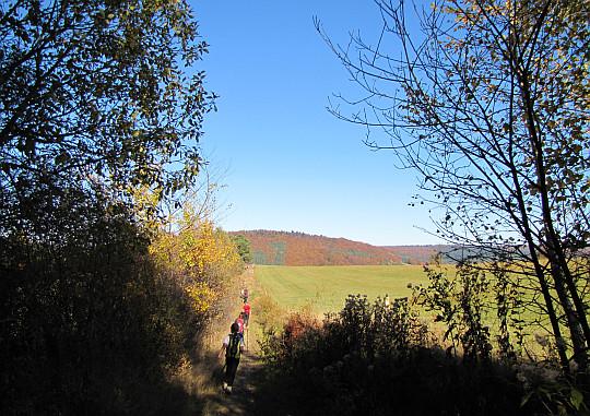Zejście z Rotundy do Zdyni.