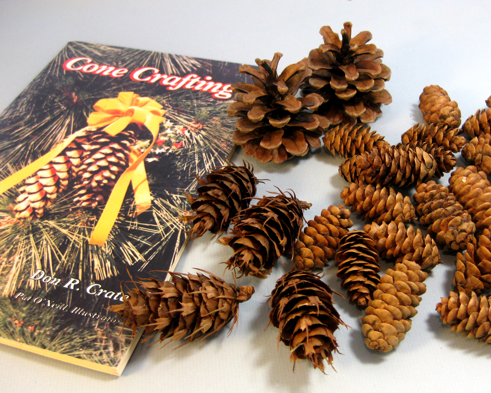 Another Bright Idea: Pine Cone Wreaths